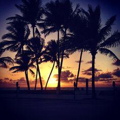 Deerfield Palms #instagram_florida #instaflorida #beach #floridabeaches #florida #iphone5 #iphonephotography #beachCam #fortlauderdale #youshouldbehere