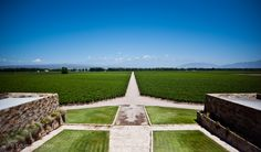 https://flic.kr/p/hNteCr   Wine Empire   @ Mendoza, Argentina, South America.