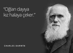 Son zamanlarda sosyal medyada dönüp duran ve artık bir 'meme' haline gelen uyduruk tarihi aforizmalardan en beğendiklerimizi bir araya topladık. Charles Darwin, Robert Darwin, Einstein, Funny Share, Nicolas Tesla, Inner Me, Atheist Quotes, Old King, Lord