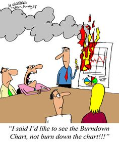 Humor - Cartoon: Do you understand Agile terms such as Burndown Chart?