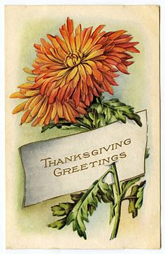 Thanksgiving ...vintage flower card
