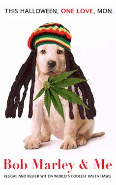 Bob Marley & Me, 2009