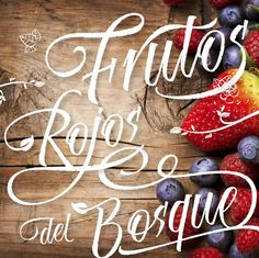 Risotto Script - Available on MyFonts 70% off on Typography Served