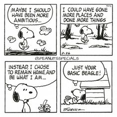 We couldn't agree more Snoopy! Peanuts Cartoon, Peanuts Snoopy, Peanuts Comics, Snoopy Cartoon, Snoopy Comics, Funny Comics, Happy Comics, Snoopy Love, Snoopy And Woodstock