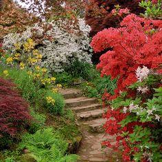 64 Best Garden Plans Slope Images Sloped Garden Garden