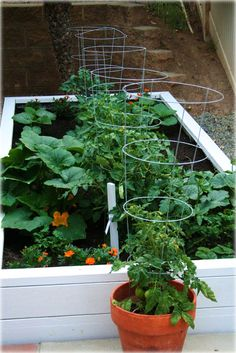 good idea for a deck or small terrace. you can grow a lot in small spaces.