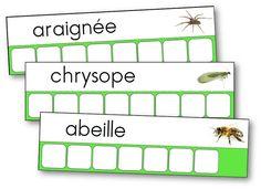 atelier-des-mots-insectes-petites-bêtes