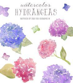 Watercolor Hydrangea Clip Art