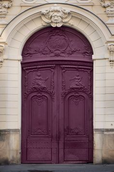 Beautiful detailed doors of ~ Paris