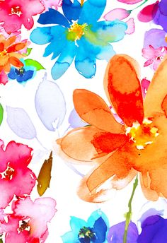 Harrison Ripley - Orange Pink floral 1.jpg