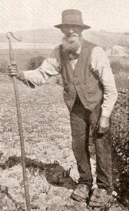 Findon Village Antiquities - Tom Rusbridge's Nepcote