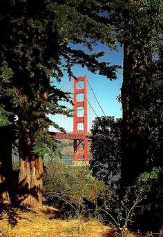 Golden Gate Bridge...