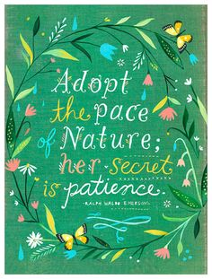 'Pace of Nature' by Katie Daisy Textual Art on Paper with Emerson quote. Poetry, handlettered art, and colorful Valentine's Day finds await on Hello Lovely Studio! Happy Love Day, Love Days, Creative Lettering And Beyond, Daisy Art, Acrylic Artwork, Historical Quotes, Nature Quotes, Art Nature, Inspirational Wall Art