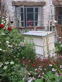 Cottage garden by Philip Lench, via Flickr