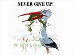 never give up! :)