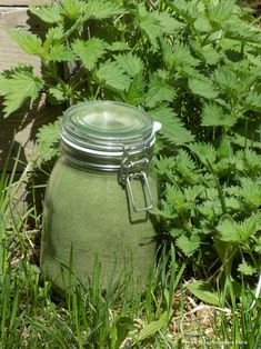 Villit nokkospuurot - Luomulaakso Preserves, Mason Jars, Veggies, Food, Preserve, Meal, Vegetables, Essen, Mason Jar