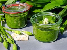 """Wild Garlic Pesto - A fresh, pungent, garlic pesto adding a """"garlicky twist"""" to many dishes. Natural Health Tips, Natural Health Remedies, Superfood, Red Wine Benefits, Wild Garlic Pesto, Fat Burning Diet, Cough Remedies, How To Lose Weight Fast, Cucumber"""