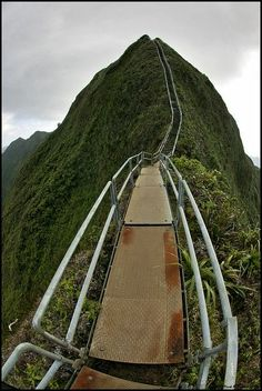 Stairway to Heaven Hawaii.... Would love to do this before I go... Actually it sounds like its on my way....