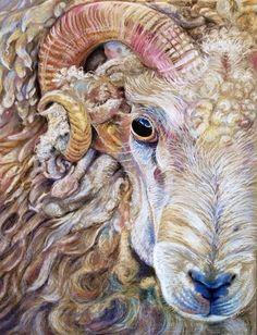 Sheeps eyes 2 - Pastel. Glyn Overton