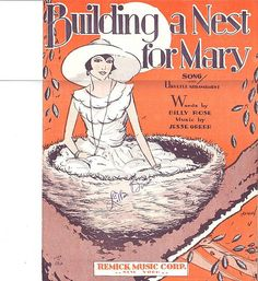 Building A Nest For Mary