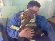 Fiam és Laky  kutyája