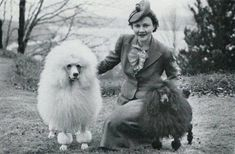 Poodles and lovely lady from the 1940s same great loyalty