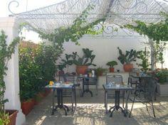 terrazze arredate con piante - Cerca con Google | Terrazze arredate ...
