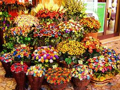 Sulmona- confetti flowers (decorations that they make with candies)