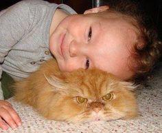 Damn little human... Get Off Me!!!