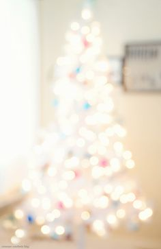 i have always loved some blurry well-lit, christmas tree photos... i have no idea why really though