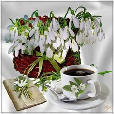 Coffee and snowdrops for a fresh start of the day. Coffee Art, My Coffee, Coffee Time, Morning Coffee, Coffee Cups, Tea Cups, Calming Colors, Good Morning Greetings, Good Morning Images