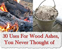 Welcome to living Green & Frugally. We aim to provide all your natural and frugal needs with lots of great tips and advice, 30 Uses For Wood Ashes, You Never Thought of