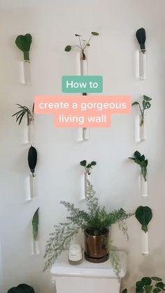 House Plants Decor, Plant Decor, Indoor Plant Wall, Diy Zimmer, Aesthetic Bedroom, Room Decor Bedroom, Diy Wall Decor For Bedroom Easy, Hanging Plants, Room Inspiration