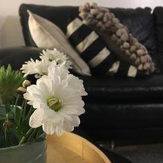 Hyvää yötä! Jos ottais tuon vapaana olevan sohvan nurkkapaikan ja ryhtyisi hetkeksi tieteilemään.  #sofa #sohva #olohuone #livingroom #pillows #myhome #instahome #home #interiordesign #interior #flowers #kukka #tyynyt #inredning #sisustus