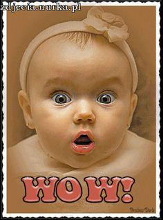 http://img687.imageshack.us/img687/576/bobasruchomywow.gif
