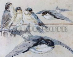 Swallows   Framed Original Watercolor  OOAK  L1 by LaLoupiote
