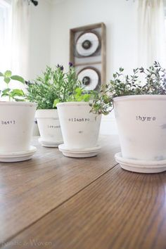 Rustic-&-Woven---Plain-terra-cotta-pots-painted-with-chalk-paint-and-distressed