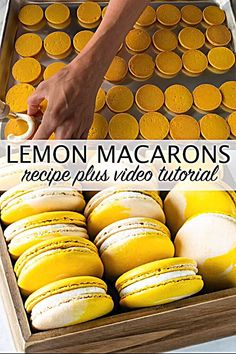 Lemon Macarons using the Swiss method, filled with lemon buttercream and lemon curd! Check out the full video tutorial o French Macaroon Recipes, French Macaroons, Macaron Filling, Macaron Flavors, Lemon Macarons, Lemon Buttercream Frosting, Lemon Curd Filling, Lemon Curd Uses, Lemon Curd Dessert