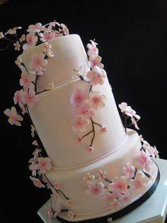 Cherry Blossoms - white chocalate cake, raspberry coulis with white chocolate mousse, and red velvet, cream cheese and strawberry puree filling..