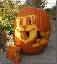 Minnesota gopher on Pinterest   Football, Hockey and Pumpkin Carvings