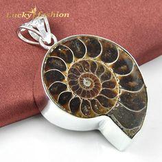 Amonita fósil colgante de plata