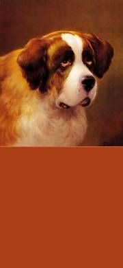 Free Cute Pet & Animal Stationery for Facebook, Twitter and Email - Dog, St. Bernard.