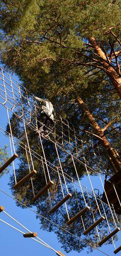 Spiderman up in the trees! #seikkailupuisto #treetopadventure #espoo #finland