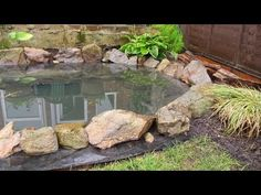 With warmer weather comes my itch to get outdoors and spruce up my gardens. I love nothing more than spending an afternoon in the flower garden, pruning back dead leaves or planting new blooms. With that in mind, I thought about adding some water features this year. I love a good water feature...