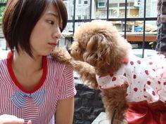 Crunchyroll - Forum - Hebe Tian vs. Rainie Yang - Page 7