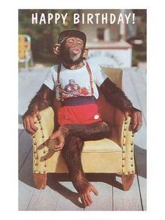 Happy Birthday Dressed Chimp in Armchair - Happy Birthday Funny - Funny Birthday meme - - Art Print: Happy Birthday Dressed Chimp in Armchair : The post Happy Birthday Dressed Chimp in Armchair appeared first on Gag Dad. Happy Birthday Funny, Happy Birthday Messages, Happy Birthday Quotes, Happy Birthday Images, Happy Birthday Greetings, Happy B Day, Birthday Posts, 19th Birthday, Hapoy Birthday