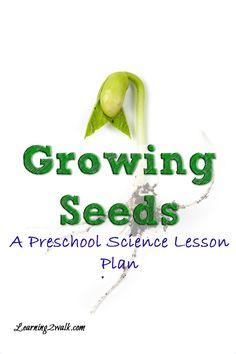 preschool lesson plan growing seeds
