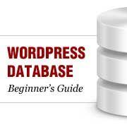 Beginner's Guide to WordPress Database Management with phpMyAdmin   database   #database management   #database