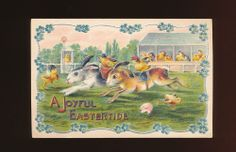 Rare  ~BUNNY Rabbits ~At The Racetrack 1911 Embossed Easter Postcard-kkk405