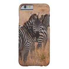 Zebra in Kenya iPhone 6 Case